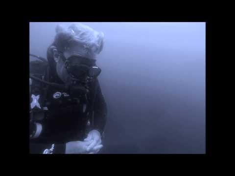 Shark Diving, Aliwal Shoal, South Africa Dec14