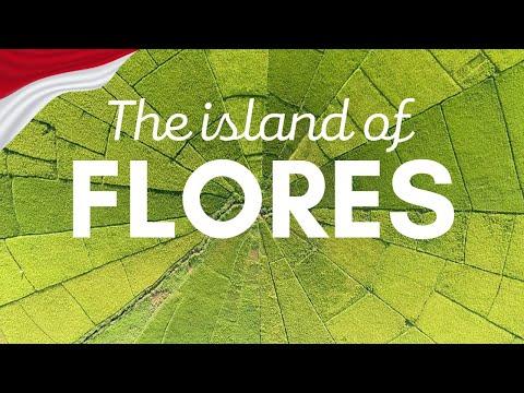 FLORES - [GoPro & Drone] - Kelimutu, Komodo, Wae Rebo, Bena, Cancar
