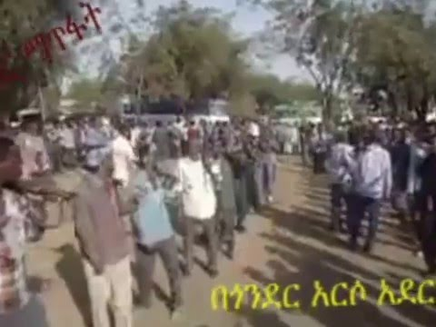 Genocide In Ethiopia   Gondar And Oromo Regin December 2015