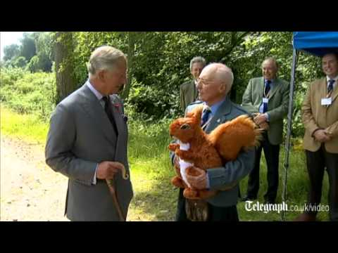 Prince George's first birthday: Prince Charles given toy squirrel as gift for grandson