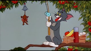 Tom and Jerry, 91 Episode - Pup on a Picnic (1955)