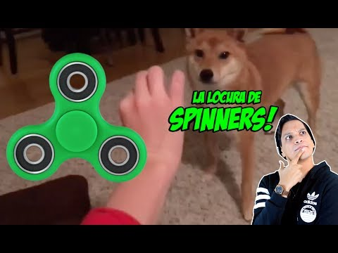 La Locura del Spinner!!