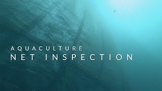 Aquaculture Net Inspection - Underwater ROV