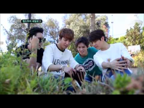 """CNBLUE """"CAN'T STOP"""" Comeback Show"""