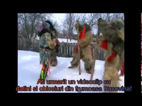 Ursii din Rasca Sucevei! Revelion 2011