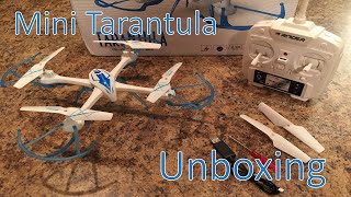 Mini Tarantula Unboxing, assembly, first impressions