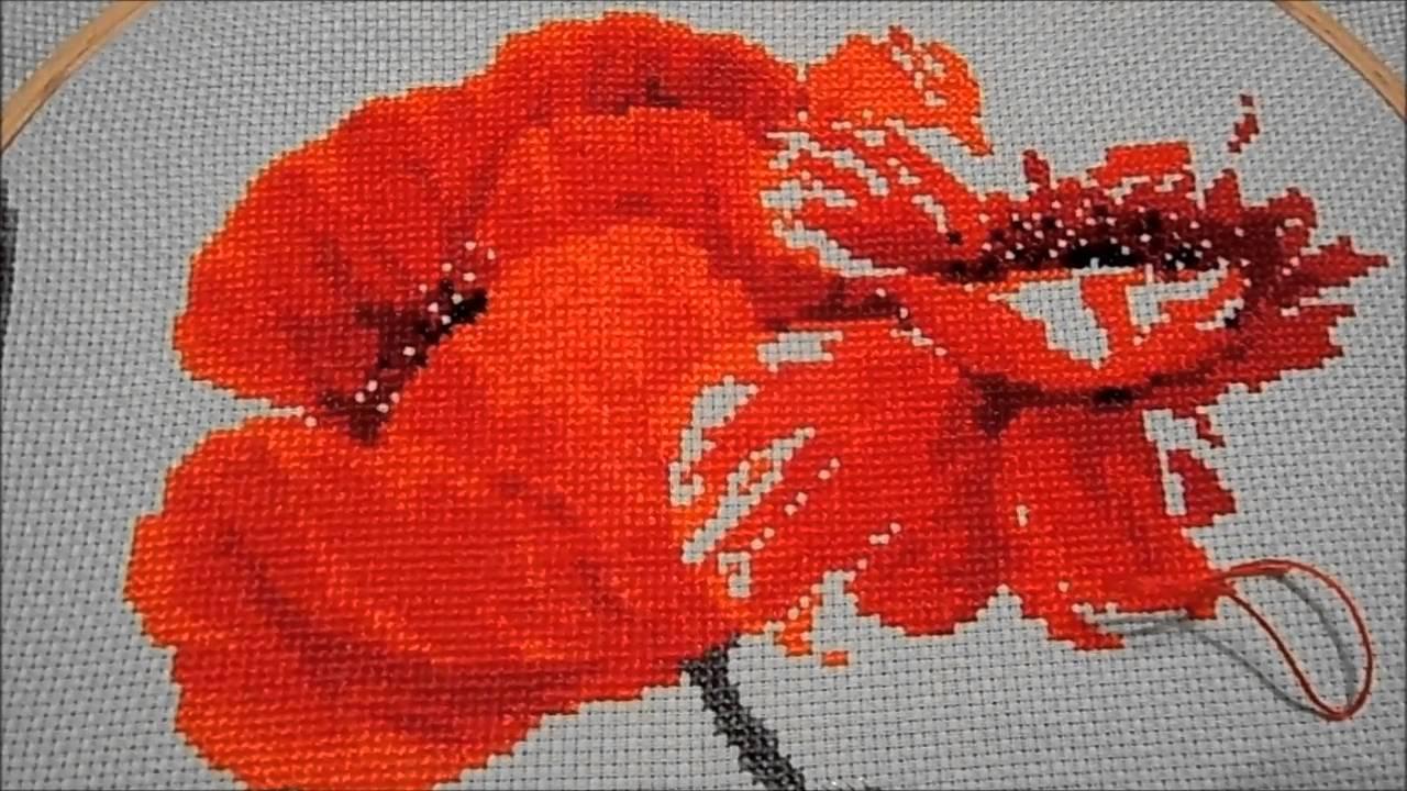 Вышивка алые маки фирмы риолис 73