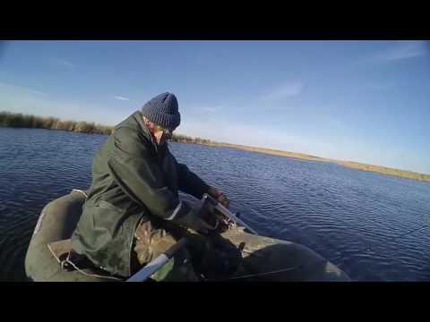 маныч рыбалка в районе