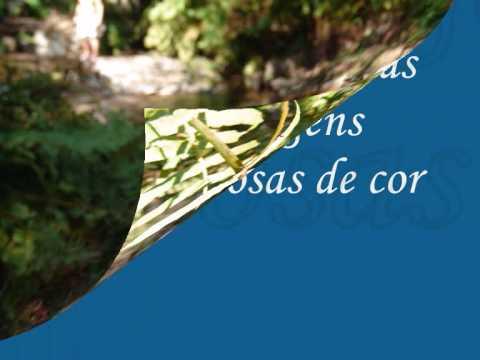 "Vila Cova Barcelos   "" Rio de Enchate"""