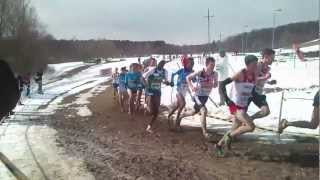 WXC Bydgoszcz 2013: 40th IAAF World Cross Country Championships - Junior race 8km