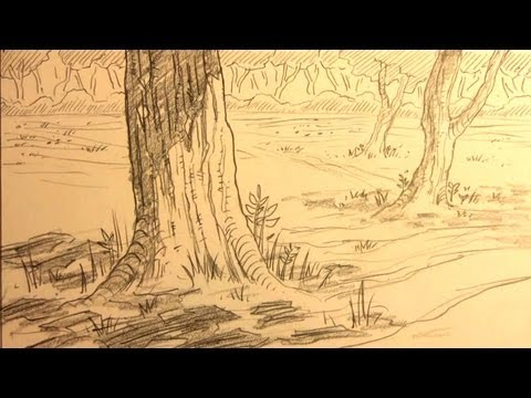 Easy Forest Tree Drawing ▶ How to Draw Forest