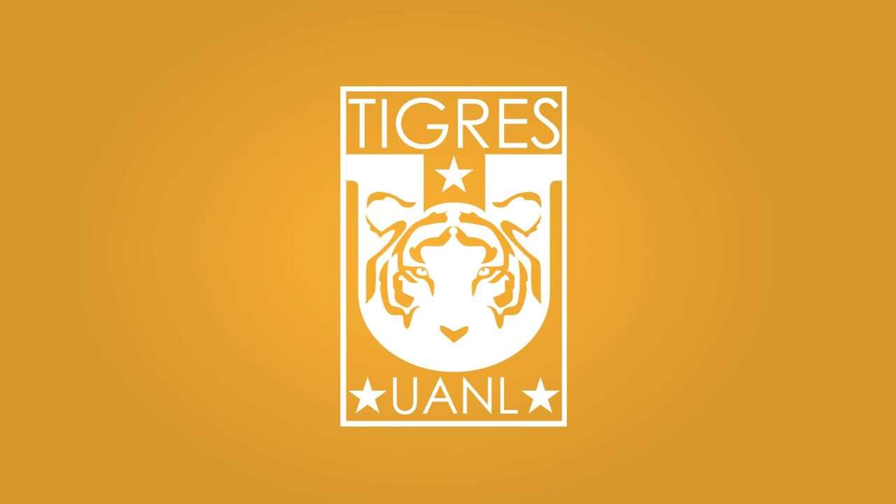 Image Result For Futbol Tigres