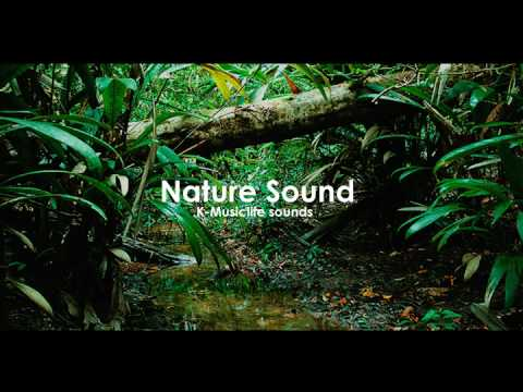 Nature Sound 3 - THE MOST RELAXING SOUNDS -