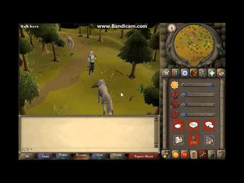 oldschool runescape  slayer guide to killing wolves for 1 def pures showing safespot for lvl 64s