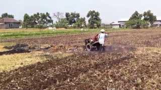 Traktor Diesel Rotary  Dipakai  Petani di Sawah