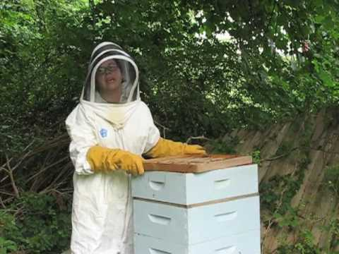 Heather's How To: Honey Harvesting