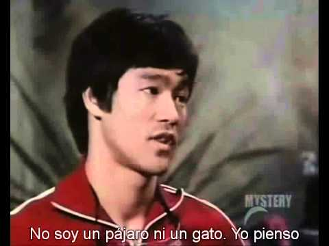 Bruce Lee. Jeet kune do.