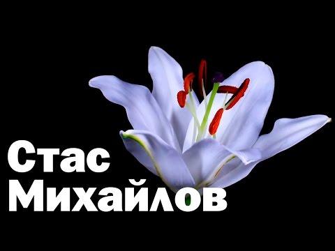 Стас Михайлов - Поделим небо (Fan Video 2017)