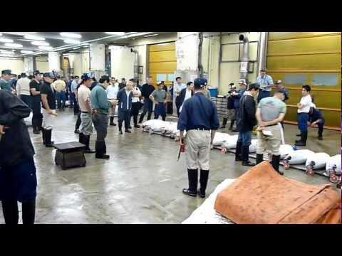 Tuna auction - Tsukiji Fish Markets - Tokyo, Japan