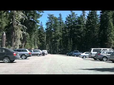 Mount Rainier National Park: Drive To Sunrise
