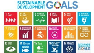 Sustainable development goals report 2018     SDGs report summary   