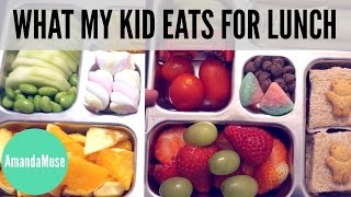 Kids LUNCH IDEAS + PlanetBox Review | AmandaMuse