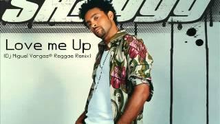 Shaggy Love Me Up Dj Miguel Vargas Reggae Remix