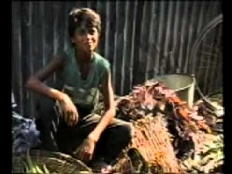 Child Labor Of Netrakona, Bangladesh-part 3.mp4 video