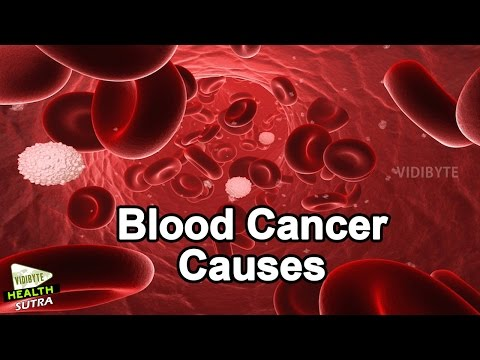 What Is Blood Cancer, Blood Cancer Causes || Cancer Treatment