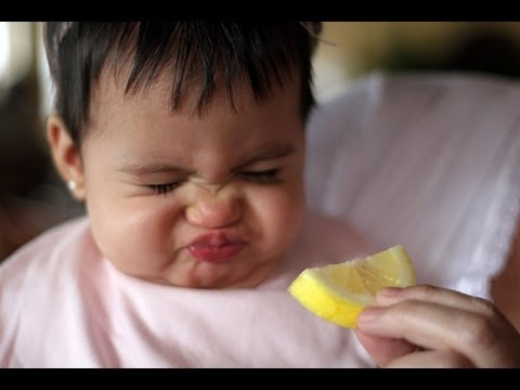 Babies Eating Lemons for First Time Compilation 2013 [HD]