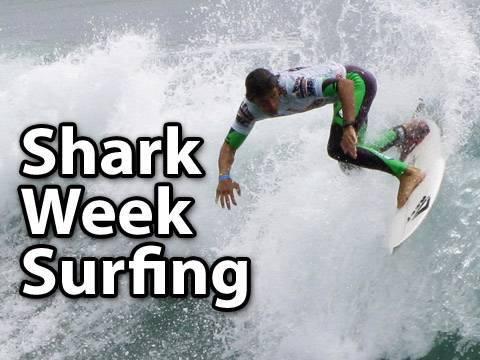Shark Week Surfing!