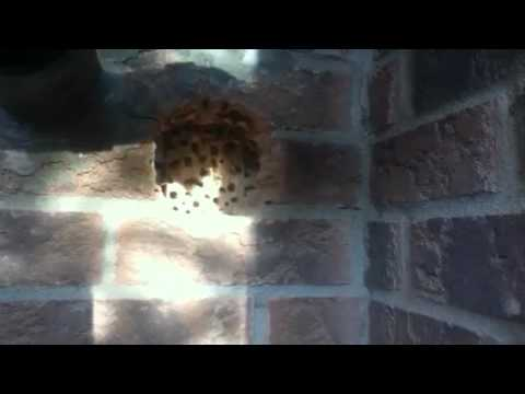 4 Quot Dryer Vent Install Through Brick Youtube