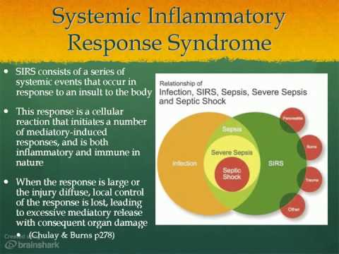 sepsis systemic inflammatory response syndrome and Keywords: sepsis, severe sepsis, septic shock, inflammatory response, systemic inflammatory response syndrome (sirs) the concept of a systemic inflammatory response syn-drome while most would agree that sepsis is defined as a systemic inflammatory response to the presence of a documented infec.
