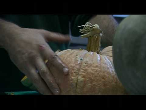 La Terra Trema 2009 - video assaggio n° 3 - Hallowine