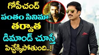 Gopichand Higher Diamond | Gopichand Latest News | Tollywood | Top Telugu Media