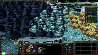 Warcraft 3: TFT [Custom] #376 Farmers vs Hunters s 0.22 - Proti Berenovi