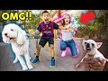 download lagu      I BOUGHT A DOG WITHOUT MY MOMS PERMISSION!! *PRANK GONE WRONG* | The Royalty Family    gratis