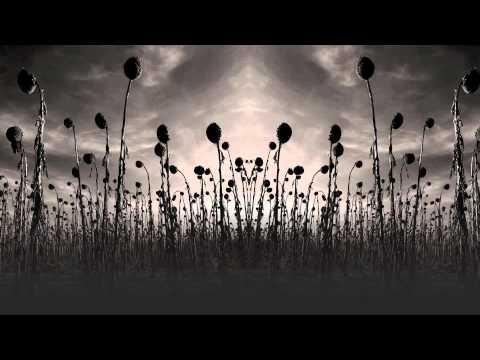 Lunar Aurora - Child Of The Apocalypse
