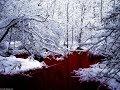 Breaking Benjamin - Red Cold River [Lyrics Video] MP3