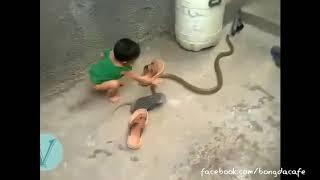em bé chơi với rắn như đồ chơi