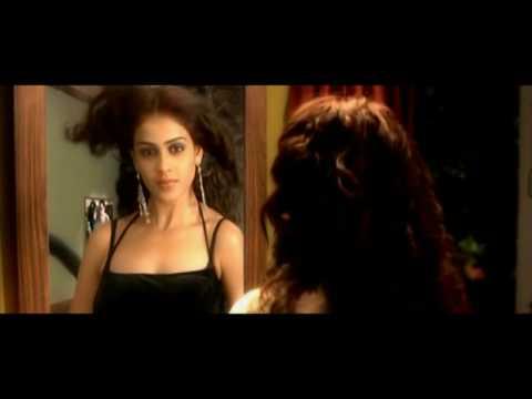 Jaane Tu Mera Kya Hai video