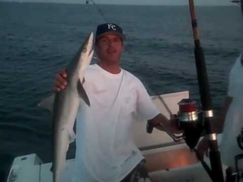 Shark Fishing w/ Capt. Brook | Bradenton Fishing Charters