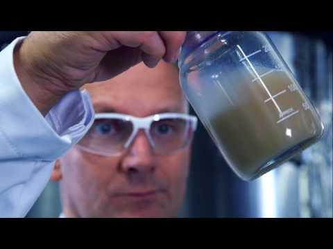 Biologischer Pflanzenschutz: Winzige Würmer vertilgen Schnecken