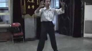 Yiquan Training 08-13 pt8 - Standing Pillar, Pushing Hands