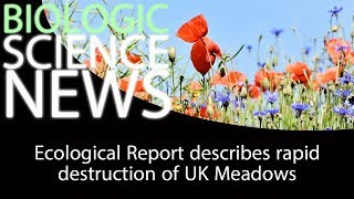 Science News - Ecological Report describes rapid destruction of UK Meadows