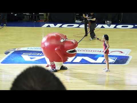 NBA - Toronto Raptors mascot eating cheerleader - FUNNY!