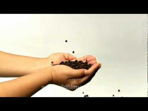 Black pepper trade in Indian hands