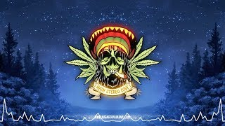 Tribal Seeds Lonely Night