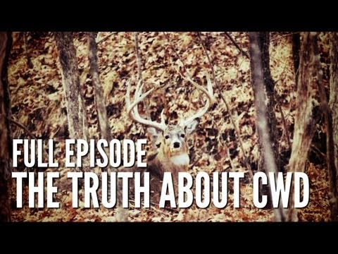 Documentary on Chronic Wasting Disease | Deer & Wildlife Stories Special Edition