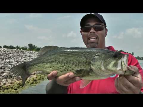 kick butt fishing video sure to satisfy!